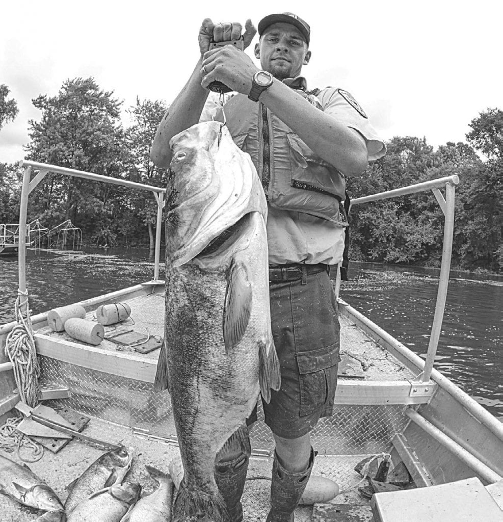 Michigan DNR letter pledges $8M to Asian carp barrier at Brandon Road Lock and Dam in Illinois - Browncitybanner